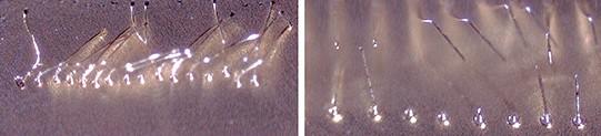 Испытание натяжения проволоки клиновых соединений на необработанных и обработанных плазмой поверхностях ENEPIG