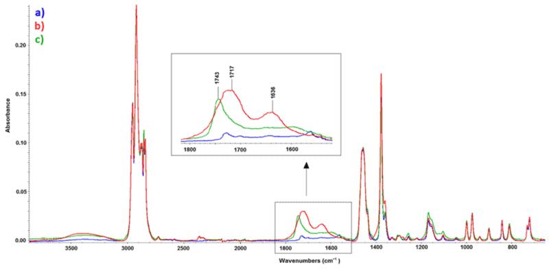 nfrarotspektren von (a) PP, unbehandelt, (b) PP, nach Behandlung mit Atmsophärendruckplasma (8 W), und (c) PP, nach β¯-Strahlenbehandlung (99 kGy).