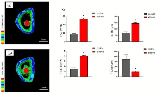 3D-Makro-CT-Bilder zeigen einen erhöhten Anteil an Knochenmasse (grün) bei den plasmabehandelten Zirkon-Implantaten (rot).