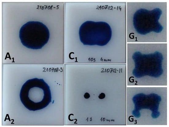 Die Formen der Aktivierungsfläche, die durch die 58 mN/m Testtinte auf dem HDPE-Substrat für die Konfigurationen A, C und G sichtbar gemacht werden. Die Größe der Substrate, die in den Bildern für A und C zu sehen sind, beträgt 50 mm × 50 mm. Die Behandlungszeiten betragen 100 ms, 3 s, 10 s, 1 s und 20 s für A1, A2, C1, C2 bzw. G1-3.